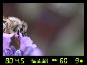 fotoaparát ostřící body