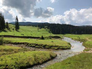 Rumunského hory iPhone